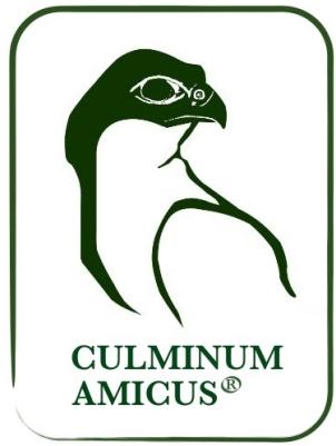 CULMINUM AMICUS.001